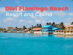 divi flamingo beach resort and casino kralendijk all inclusive hotel resort top 10 casinos