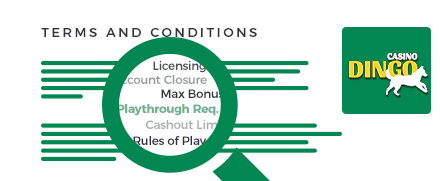 Dingo Casino Terms and Conditions