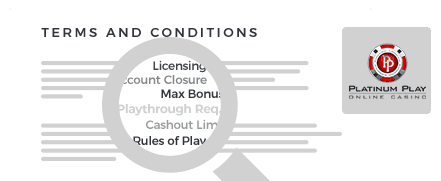 Platinum Play Casino Terms