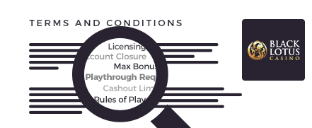 black lotus casino terms and conditions top 10