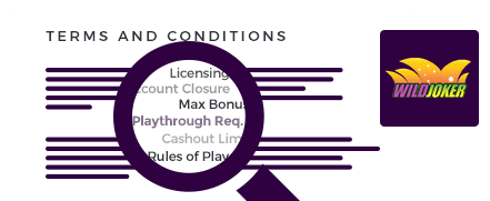 Wild Joker Casino Top 10 Terms and Conditions