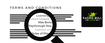 ragingbull terms and conditions