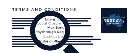 true-blue terms and conditions