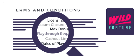 wild fortune terms and conditions