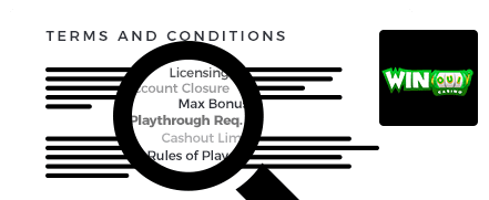 winoui terms and conditions