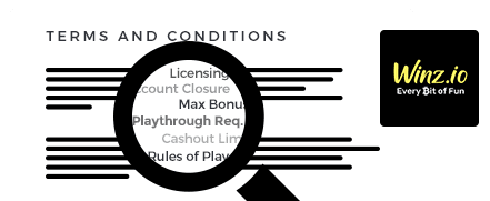 Winz.io Casino Terms and Conditions